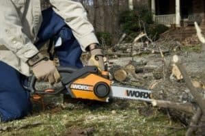 a chainsaw for cutting firewood