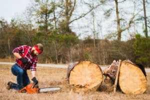person using battery chainsaw in front of tree log